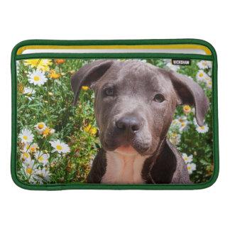Staffordshire Bull Terrier puppy portrait MacBook Air Sleeves