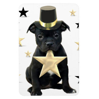 Staffordshire bull terrier puppy rectangular photo magnet