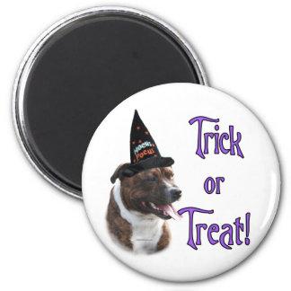Staffordshire Bull Terrier Trick Magnet