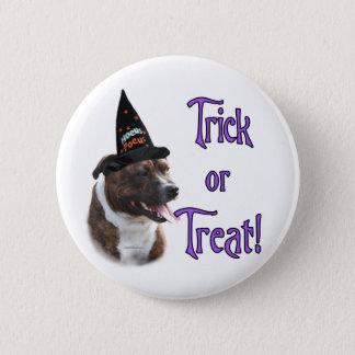 Staffordshire Bull Terrier Trick Pinback Button