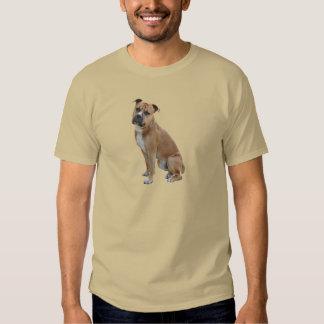 Staffordshire Terrier americano (a) - Brown-blanco Camisas