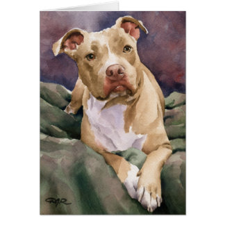 Staffordshire Terrier Card