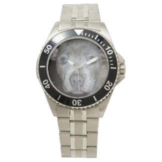 Staffordshire_Terrier_Mens_Stainless_Steel_Watch, Wristwatches