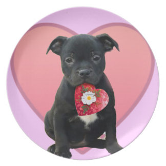 Stafforshire bull terrier puppy decorative plate