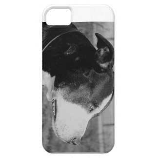 staffy bw.png iPhone SE/5/5s case