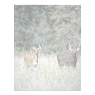 Stag and deer letterhead