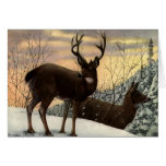 Stag and Doe Card