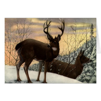 Stag and Doe Greeting Card