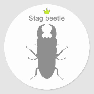 Stag beetle1g5 classic round sticker