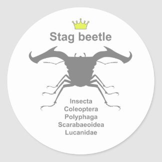 Stag beetle4 g5 classic round sticker