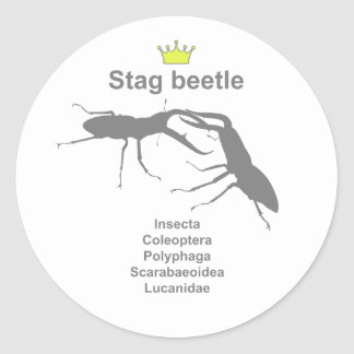 Stag beetle5 g5 classic round sticker