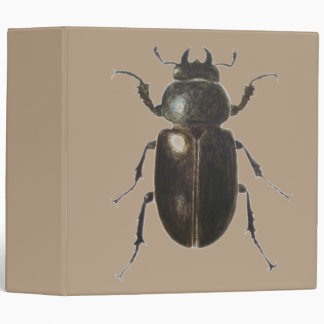 Stag Beetle 2011 3 Ring Binder