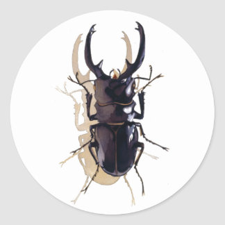 """""""Stag beetle"""" Insect Watercolor Art Classic Round Sticker"""