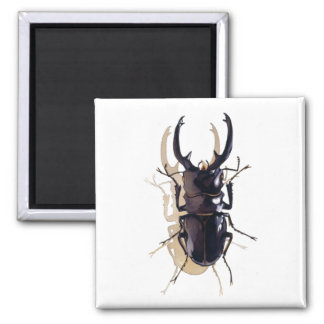 """""""Stag beetle"""" Insect Watercolor Art Fridge Magnets"""