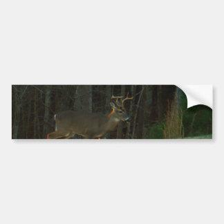 Stag / Buck  Deer Green Camouflage Bumper Sticker
