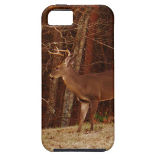 Stag / Buck  Deer Red Oak Camouflage iPhone SE/5/5s Case