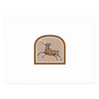 Stag Deer Looking Up Jumping Cartoon Postcard