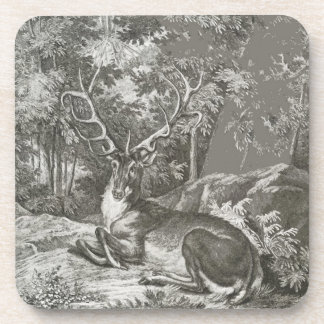 Stag In The Forest Beverage Coaster