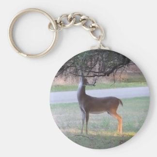 Stag Tangles Antlers Keychain
