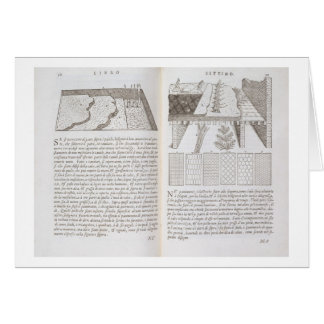 Stages and methods of laying floors, from 'Della A Cards