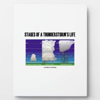 Stages Of A Thunderstorm's Life (Meteorology) Plaque