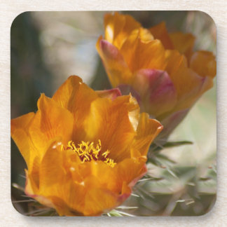 Staghorn Cholla Cactus Blossoms Cork Coasters