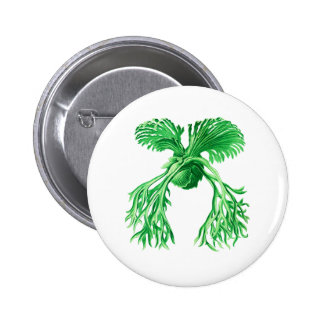 Staghorn Fern Pinback Buttons