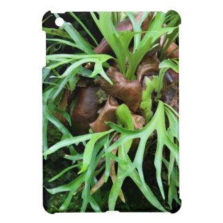 Staghorn Fern iPad Mini Case