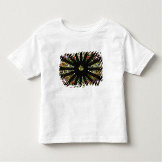 Stained Glass detail Toddler T-shirt