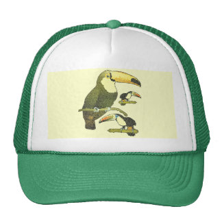 Stained Glass Toucan Trucker Hat