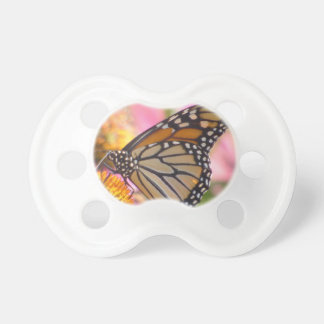 Stained Glass Wings Pacifier