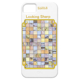 Stainglass iPhone SE/5/5s Case