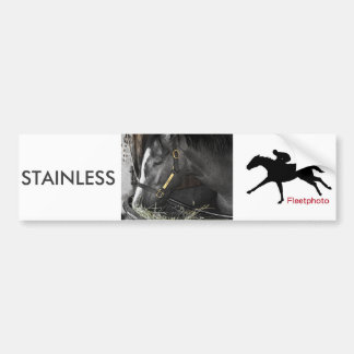 Stainless by Flatter Bumper Sticker