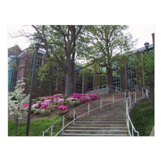 Stairs Leading Towards The Bio-Medical Building At Postcard