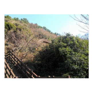 Stairs on a hill postcard