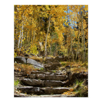 """Stairway to Autumn"", Quaking Aspen, Portrait Poster"