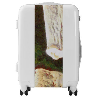 Stalacites and Stalagmites in a cave Luggage