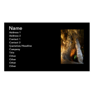 Stalagmite Double-Sided Standard Business Cards (Pack Of 100)