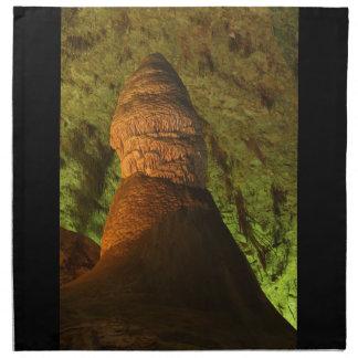 Stalagmite Cloth Napkin