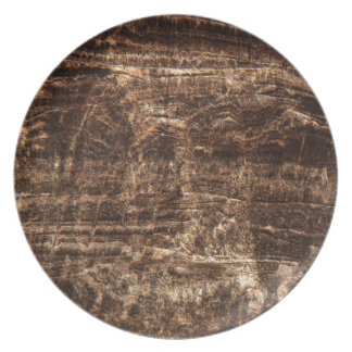 Stalagmite under the microscope plate