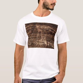 Stalagmite under the microscope T-Shirt