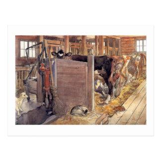 Stald o establo 1904 postal