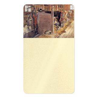 Stald o establo 1904 tarjetas de visita