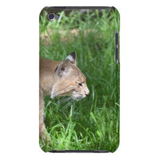 Stalking Bobcat iPod Touch Case-Mate Case