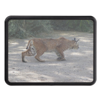 Stalking Bobcat Tow Hitch Cover