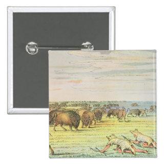 Stalking buffalo button