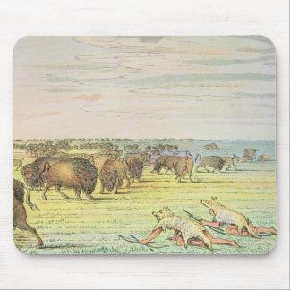 Stalking buffalo mouse pad