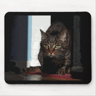 Stalking cat mouse pad