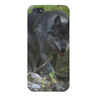 Stalking Grey Wolf Cool iPhone Case