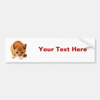 Stalking Kitten Staring at You Bumper Sticker
